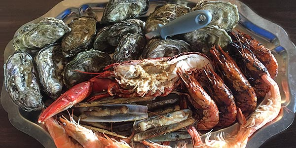 tharingkje-oesters